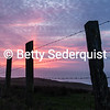 Fence at Sunset, Point Reyes