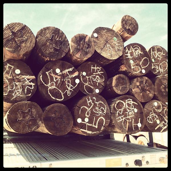 Log Truck - Northern California
