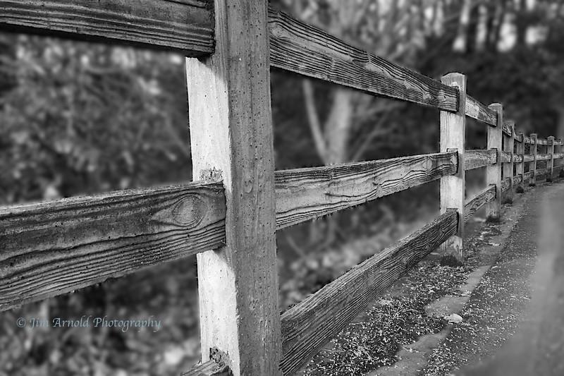 Fence at Alton Baker Park (Agfa Pro version)