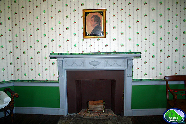 Fireplace in the guest bedroom