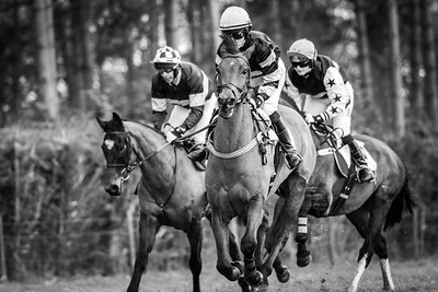 Waveney Harriers Point to Point Higham, Suffolk, United Kingdom, GBR 23/2/20 - MANDARTORY Credit Sophie Harris/ SEH Photography  - NO UNAUTHERORISED USE - 07825091348