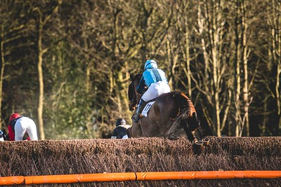Waveney Harriers Point to Point at Higham