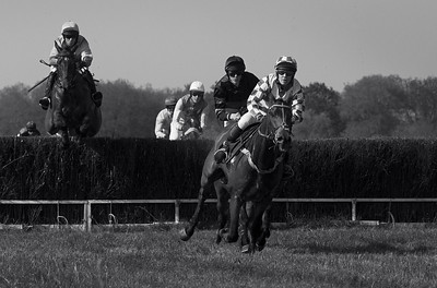 Maisemore Park point-to-point