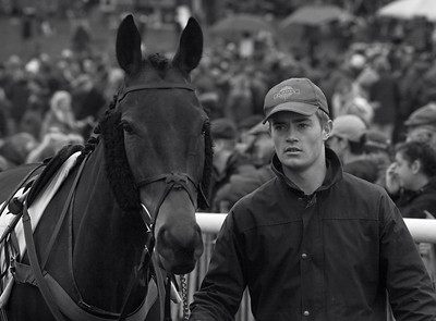 Pre-race, West Lockinge point-to-point