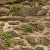 Detail on Walls, Bolkow Castle, Poland