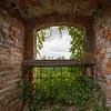 Ivy covered window, Bolkow Castle, Poland