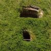 Ivy walls of Bolkow Castle, Poland