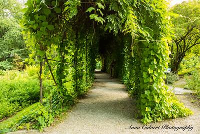 Cracow Botanical Gardens