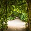 Krakow Botanical Gardens, Poland
