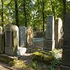 Jewish Cemetery, Krakow