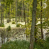 Lakes Wydminskie