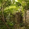 Ruins among the trees