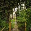 Path to my childhood home, Jezow