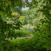 Warsaw Botanical Gardens, Poland
