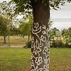 Folk art painted on trees, Zalipie Poland