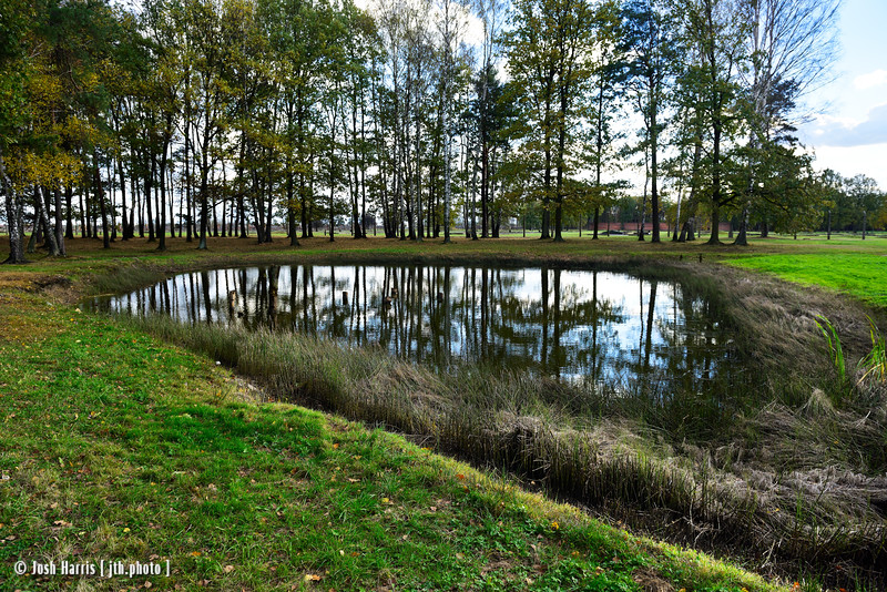 Pond Containing Human Ashes, near Crematorium IV, Auschwitz II-Birkenau, Poland, October 2018.