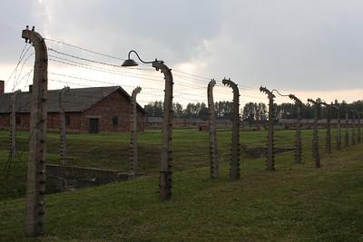 Poland - Brezinka (Birkenau)