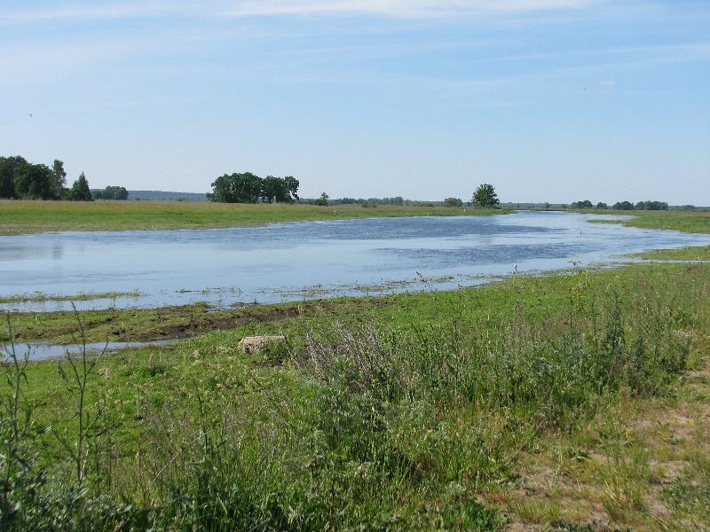 Bronowo Narew River.