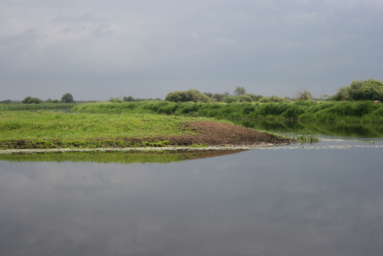 Bronowo Biebrza River and Narew River forks.