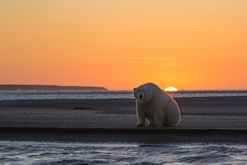 kicking back at sunset