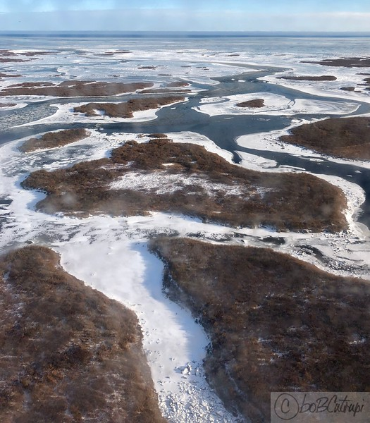 Hudson Bay Pics