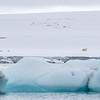 Framed by an iceberg