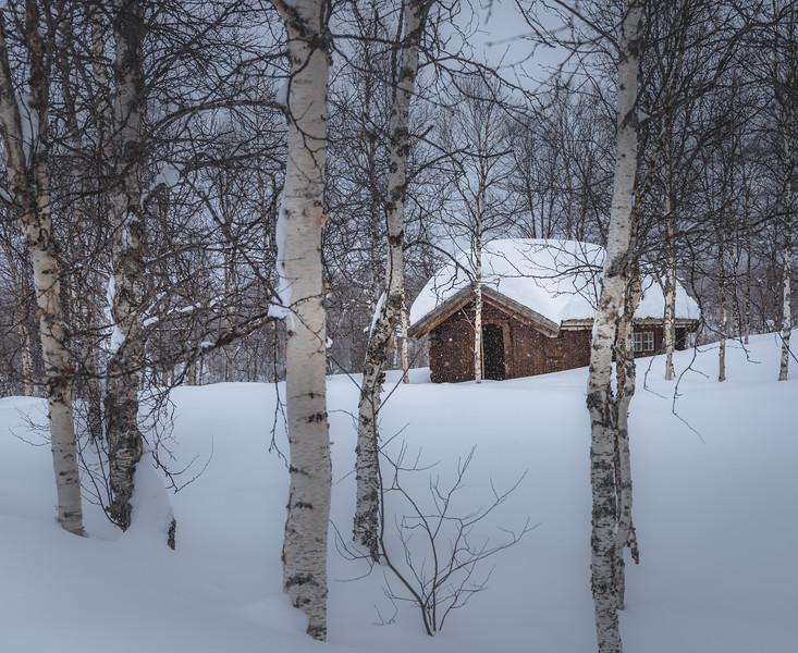 Snowy Cabin - Bardu, Norway