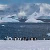 Antarctica Panorama 1x2