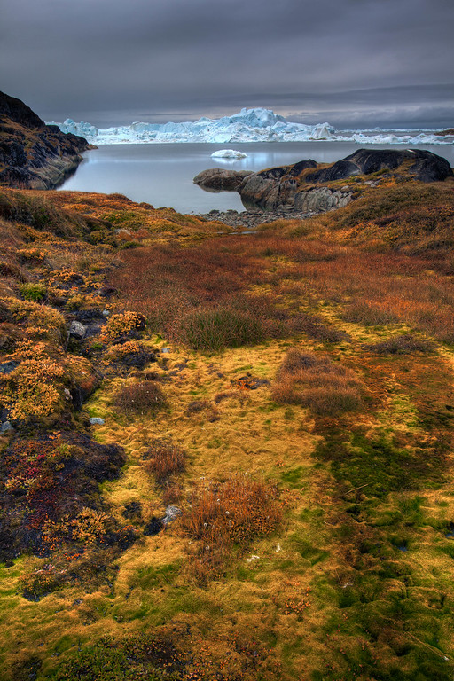 The colours of the Arctic Tundra
