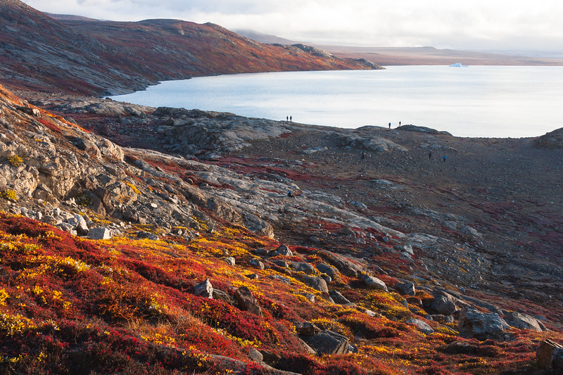 Wanderers explore the bay at Sydkap, eastern Greenland, surrounded by vibrant tundra vegetation.