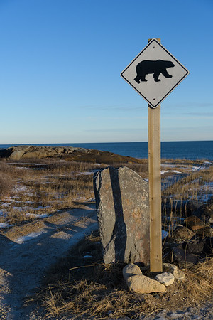 At one of the polar bear migration corridors near the inukshuk on the shore of the Hudson Bay, Churchill.