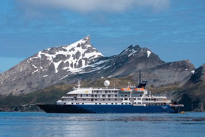 Our small expedition ship, the Sea Spirit