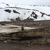 Abandoned Whale Flensing Boat at Whalers' Bay, Deception Island, Antarctica