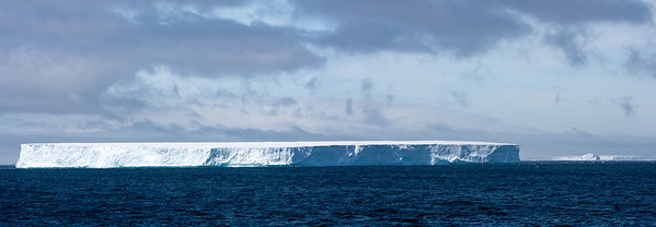Icebergs off the Antarctic Peninsula