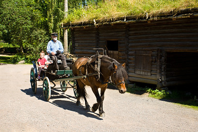 An authentic horse-drawn carriage in front of a rural farmhouse with sod roof in the Open Air Museum on Bygdoy Peninsula in Oslo.