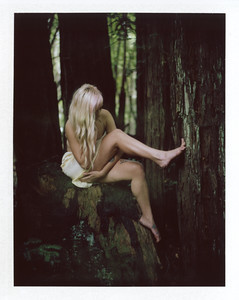 A polaroid boudoir photo on instant film of a woman in lingerie in a forest.