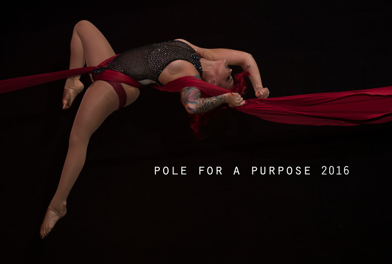 Pole for a Purpose 2016