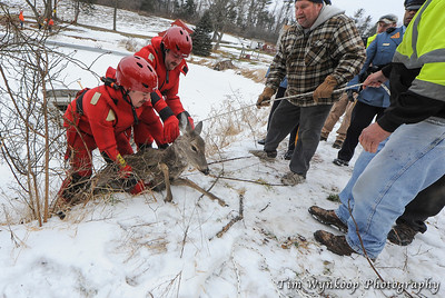 Harmony Township firefighters, Kyle McKenna, front of boat and John Latourette, lift the doe from the boat.