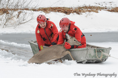 Harmony Township firefighters, Kyle McKenna, front of boat and John Latourette, prepare the lift the doe into the boat to take her to the edge of the pond.