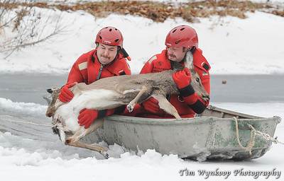 Harmony Township firefighters, Kyle McKenna, front of boat and John Latourette, lift the doe into the boat.