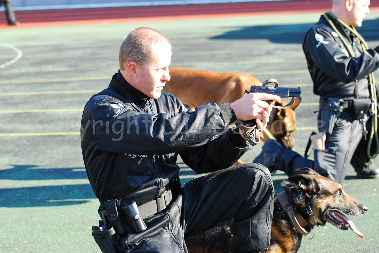 The intervention of police dogs and their handlers, members of the dog support unit of the federal police
