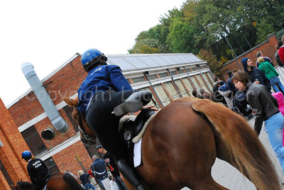 A member of the mounted police getting on the horse.