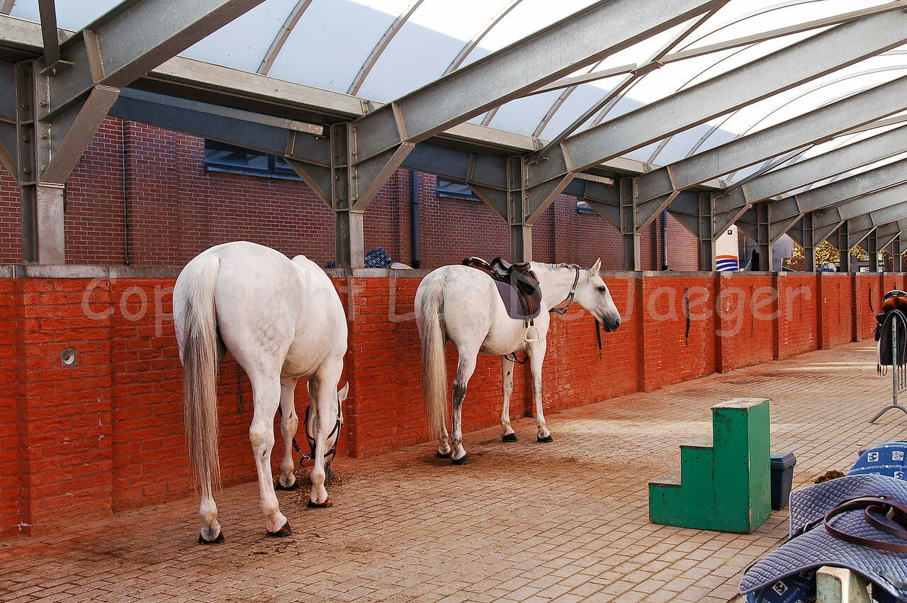 The horse stable of the federal police.
