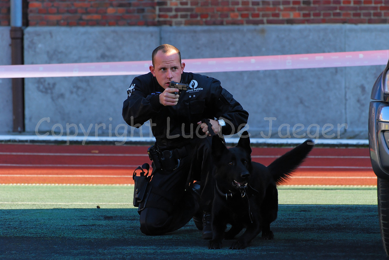 A dog handler of the dog support unit of the federal police in action.