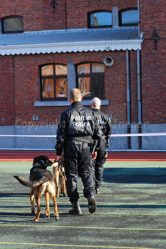 Dog handlers of the dog support unit of the federal police and their dogs.