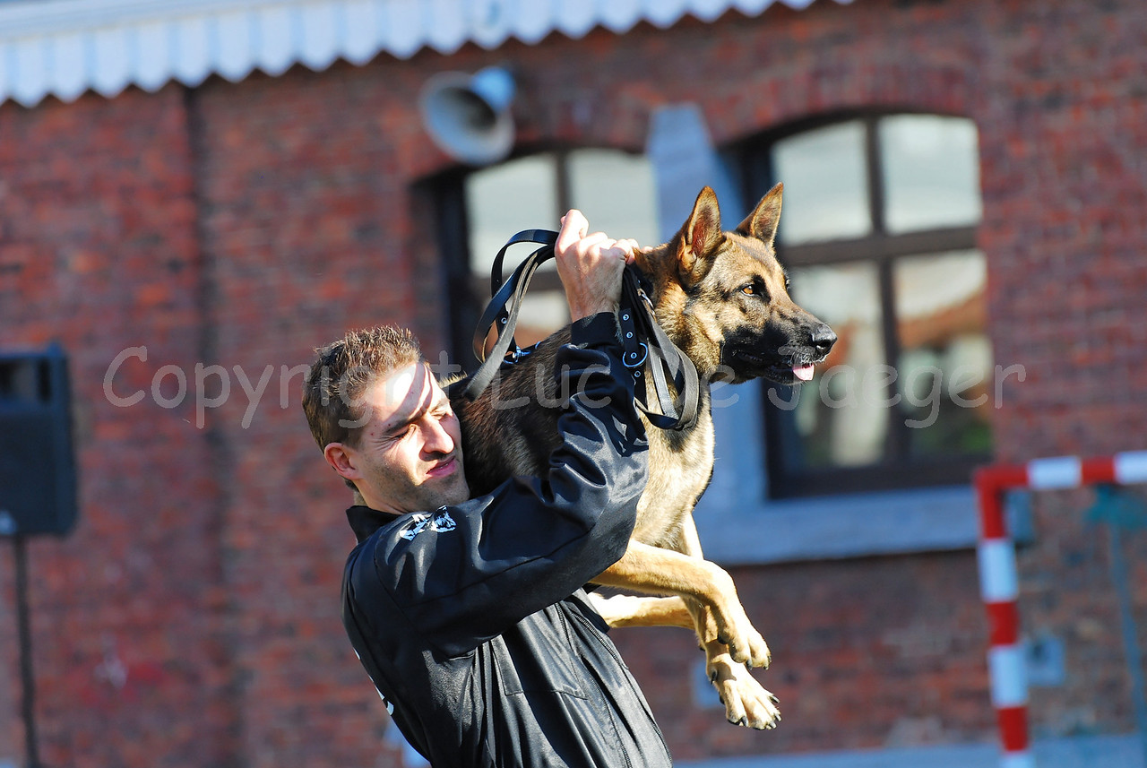 A handler of the dog support unit of the federal police and his dog at work. This is the way the dog handlers carry their dog.