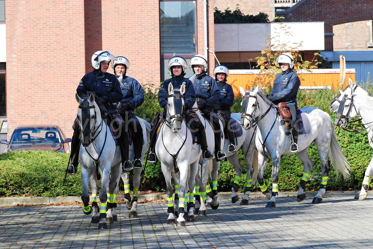 A unit of the federal mounted police in riot gear.