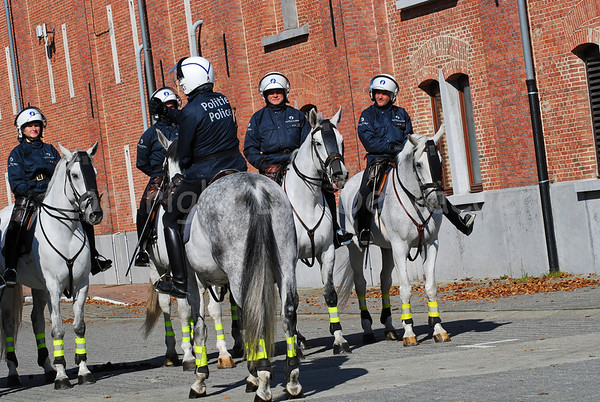 The Belgian Federal Police