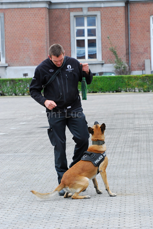 A handler of the Dog Support Unit of the federal police and his dog.