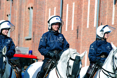 The federal mounted police in riot gear.